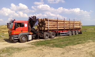 MAN TGS 26.480 6x4 BB Holztransporter LKW