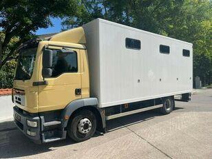 MAN Pferdetransporter Pferdetransporter LKW