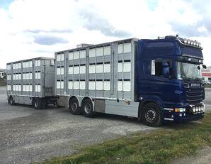 SCANIA R620 V8 For animal transport - do zywca Viehtransporter LKW + Viehanhänger
